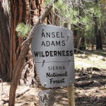 Ansel Adams Wilderness in the Sierra National Forest Sign