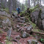Stank on the Trail in Baxter State Park in Maine