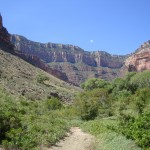View from the Bright Angel Trail in the Grand Canyon, Arizona