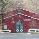 Budweiser Clydesdales Barn