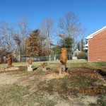 Chainsaw Carvings in Carbondale, Illinois