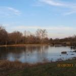 Chesterfield Central Park Pond