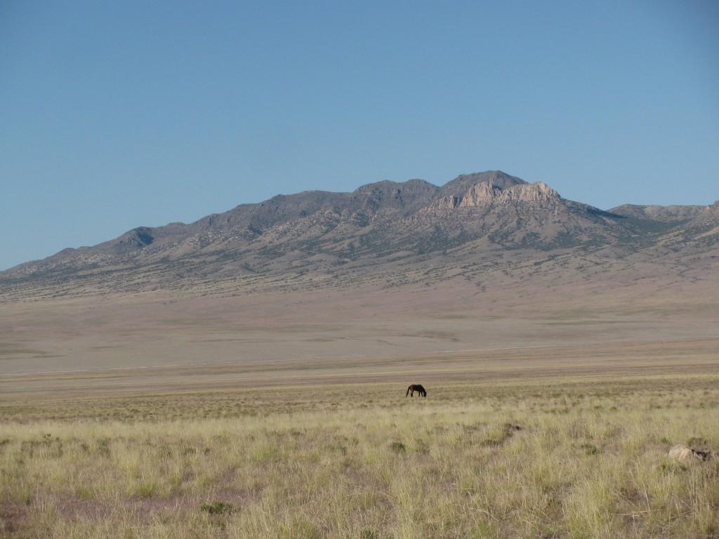 Desert-Mountain-Horse