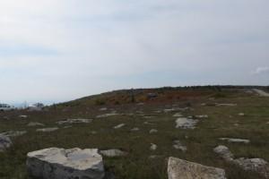 Bear Rocks Preserve in the Dolly Sods Wilderness