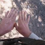 Dry Hands After the Mojave Desert