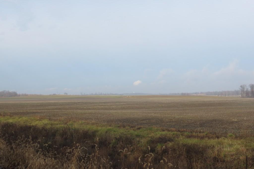 Flat Farm Field Outside Boonville, Indiana