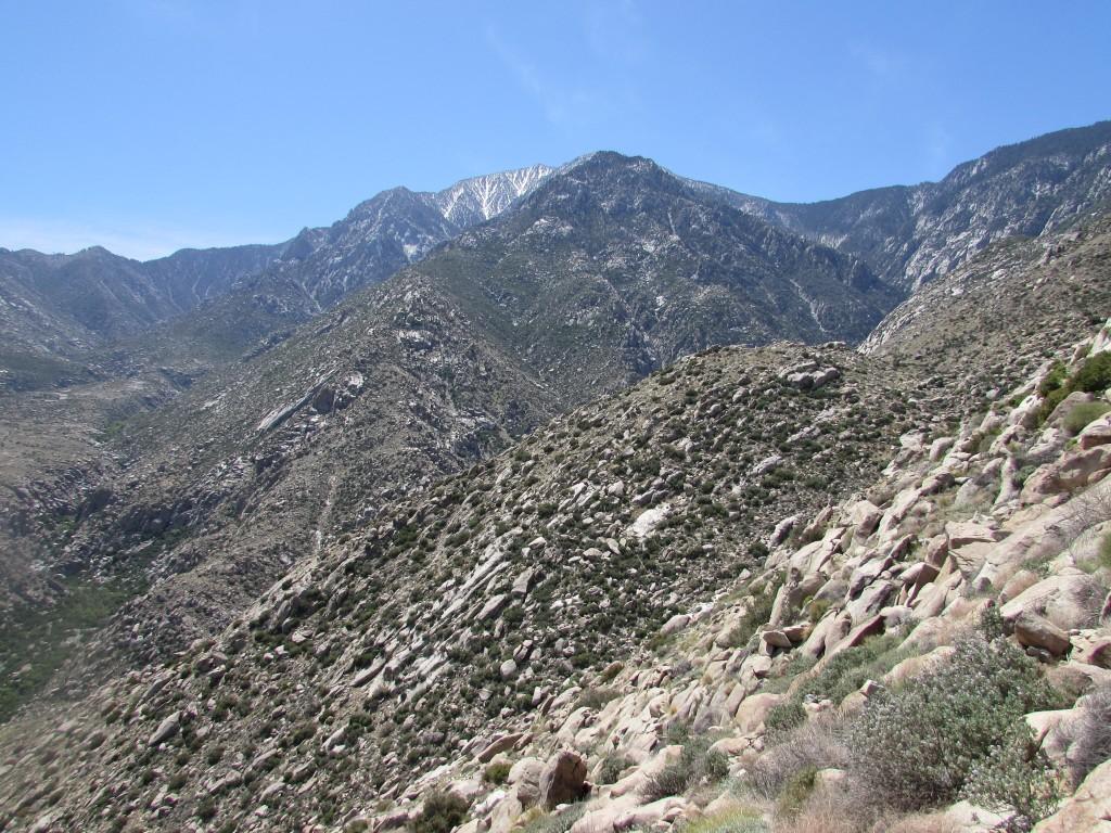 Fuller Ridge on Mount San Jacinto