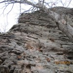 Garden of the Gods in the Shawnee National Forest
