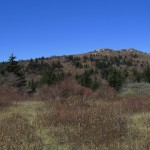 Grayson Highlands, Virginia Panorama
