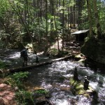 Stank Crossing to Hurd Brook Lean-To in the 100-Mile Wilderness in Maine