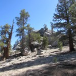 Rock Outcrop in the South Sierra Wilderness