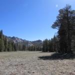 Meadow in the South Sierra Wilderness