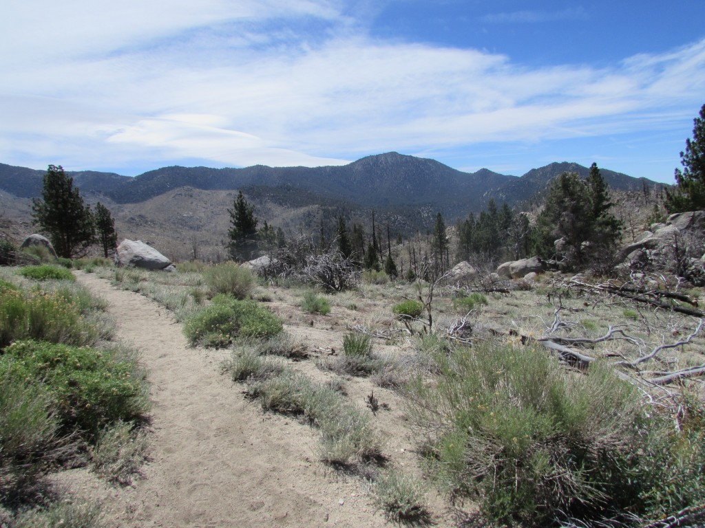 Trail in the South Sierra Wilderness