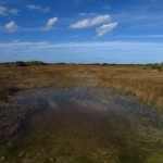Southern Everglades