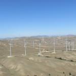 Wind Farm in Tehachapi