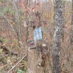 Trail Blaze Cross in Trimble Wilderness Area