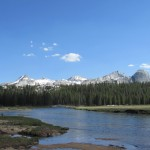 Tuolumne River in Yosemite National Park