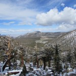 View from Horseshoe Meadows in the Inyo National Forest