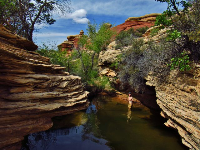 Big Spring Canyon 4