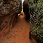 Trail into Devils Kitchen