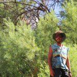 Lathrop Canyon Ruins Hike